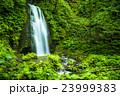 奥入瀬渓流 雲井の滝 23999383