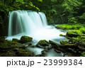 奥入瀬渓流 銚子大滝 23999384