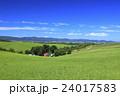 北海道 美瑛町 草原の広がる美瑛の丘 24017583