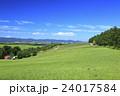 北海道 美瑛町 草原の広がる美瑛の丘 24017584