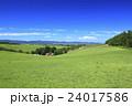 北海道 美瑛町 草原の広がる美瑛の丘 24017586