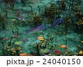 モネの池 24040150