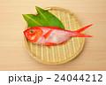 食材 金目鯛 鮮魚の写真 24044212
