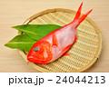 食材 金目鯛 鮮魚の写真 24044213