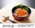 鮭イクラ丼 丼物 ご飯の写真 24047977