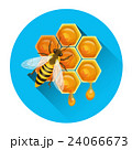 Bee On Honeycomb Apiary Icon 24066673