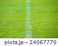 芝の白線 24067770