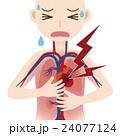 ベクター 動脈 大動脈のイラスト 24077124
