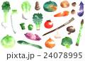 野菜シルエット画 24078995