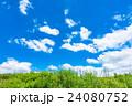 青空 夏 雲の写真 24080752