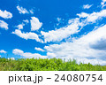 青空 夏 雲の写真 24080754