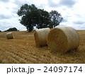 イギリスイングランドの麦畑の麦わらロール1 24097174