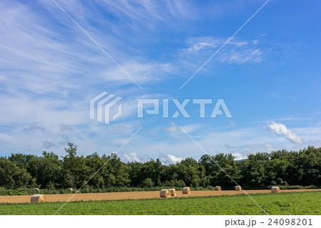 オホーツクの収穫⑥ 24098201