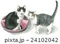 猫 動物 2匹のイラスト 24102042