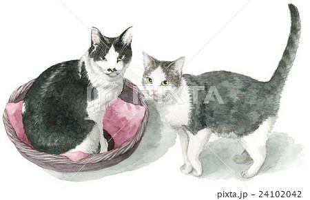 猫2匹 24102042