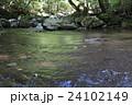 菊池渓谷 川 清流の写真 24102149