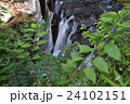 菊池渓谷 川 滝の写真 24102151