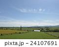美瑛の大豆畑 24107691