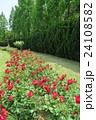 蜻蛉池公園のバラ 24108582