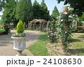 蜻蛉池公園のバラ 24108630