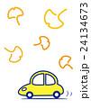 ドライブ 銀杏 24134673