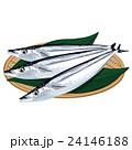 秋刀魚 イラスト 24146188