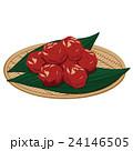 梅干し 食べ物 和食のイラスト 24146505