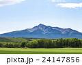 斜里岳 山 麦畑の写真 24147856