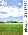 斜里岳 山 麦畑の写真 24147859