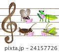 秋の昆虫のコンサート 24157726