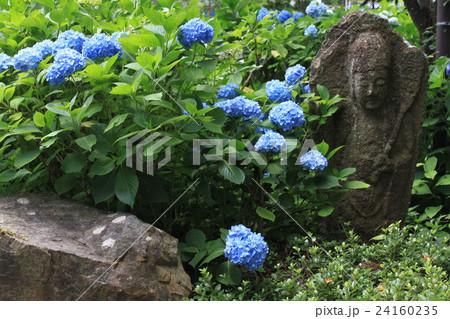 アジサイと石仏のある風景 24160235
