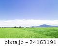 茨城県下妻市から見た夏の風景 夏の田園風景 24163191