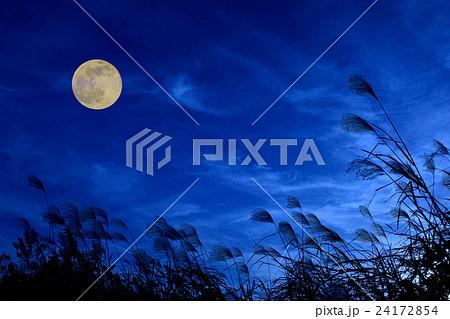 お月見イメージ ススキと月 24172854
