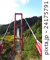 新潟県 国上山 吊り橋 24175791
