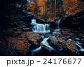 秋 自然 のどかなの写真 24176677