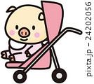 ブタの赤ちゃん 24202056