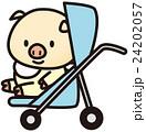 ブタの赤ちゃん 24202057