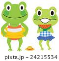 カエル 夏休み 24215534