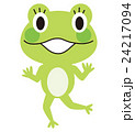 カエル 女の子 24217094