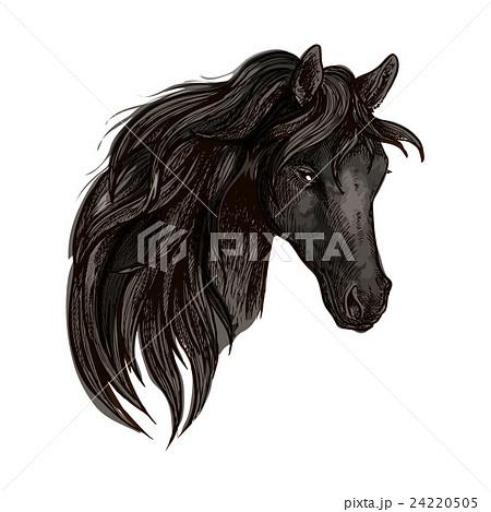 Black horse head watercolor portrait 24220505