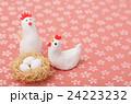 鶏 酉 夫婦の写真 24223232