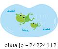 カエルの親子 24224112