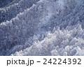 雪山 御在所岳 24224392
