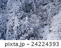 雪山 御在所岳 24224393