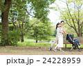 赤ちゃん 家族 公園の写真 24228959