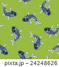 鯉のパターン 24248626