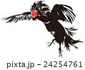 闘鶏1 24254761