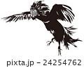 闘鶏2 24254762