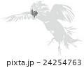 闘鶏3 24254763