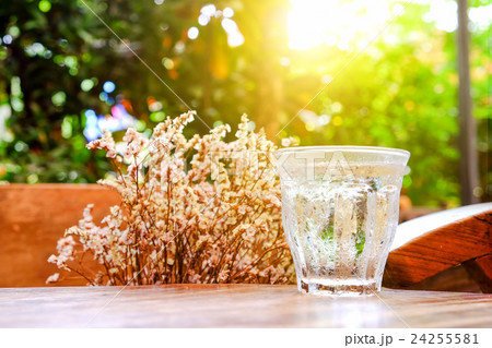 Glass water on wooden table with dry flower.の写真素材 [24255581] - PIXTA